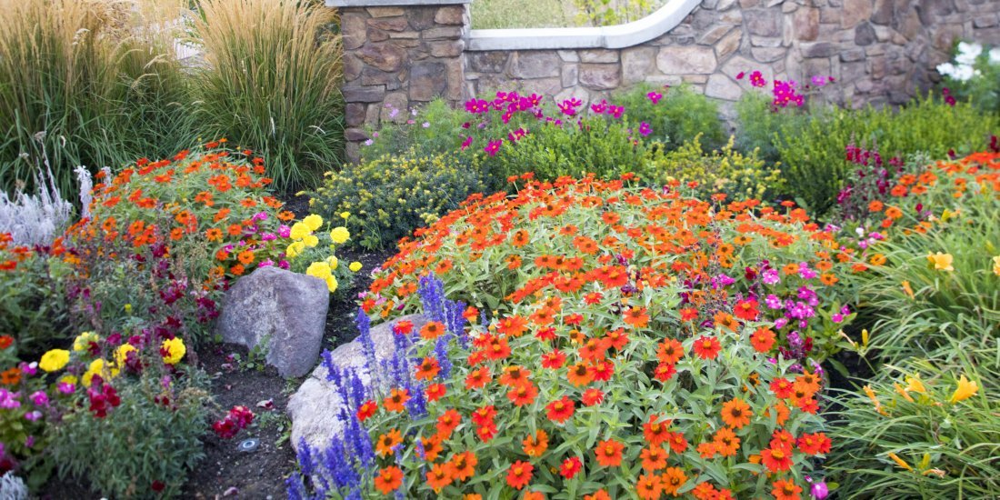 How Do I Make My Large Garden Low Maintenance
